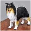 Dog Cremation Wood Urn Tricolor Collie  4 Sizes