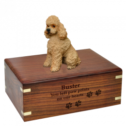 Apricot Poodle Wooden Cremation Urn  4 Sizes Available