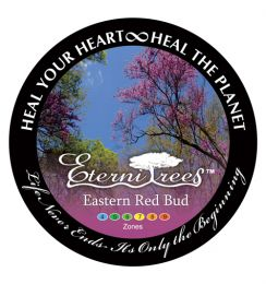 The Eastern Red Bud Tree Pet Urn